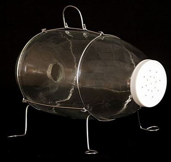 """Picture of Stream & Lake Glass Minnow Trap 1-1/2"""" funnel opening, 32015"""